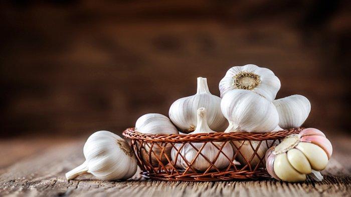 Selain Dikenal Sebagai Bumbu Dapur dan Obat, Begini Cara Mudah Menanam Bawang Putih di Rumah