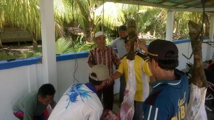 Pengurus Masjid Nurul Palah Bagikan Daging 4 Ekor Hewan Kurban