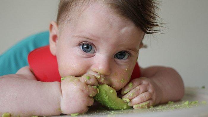 WHO dan IDAI Rekomendasikan Makanan untuk Bayi dan Batita di Masa Pandemi Covid-19