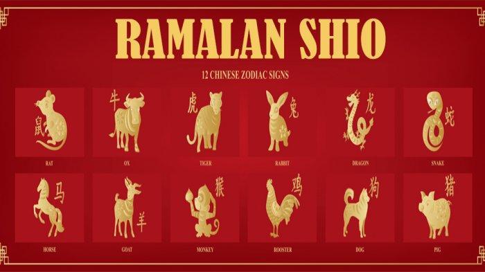 RAMALAN SHIO Hari Ini Senin 9 November 2020, Shio Ular Bahagia & Percayai Intuisimu Shio Monyet