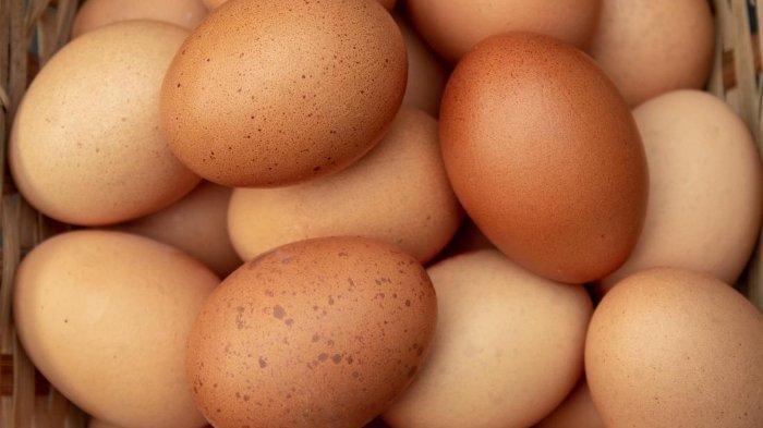 Tips Merebus Telur agar Mudah Dikupas dan Tidak Melekat di Cangkang