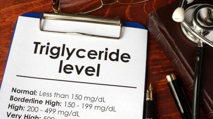 Nilai Trigliserida Normal ! Apa itu Trigliserida yang Harus Dicek selain Kolesterol & Tensi Darah ?
