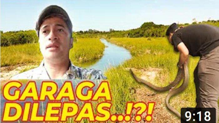UPDATE Efek King Cobra Maut di Kalbar, Irfan Hakim Menangis Panji Petualang Lepas King Kobra Garaga