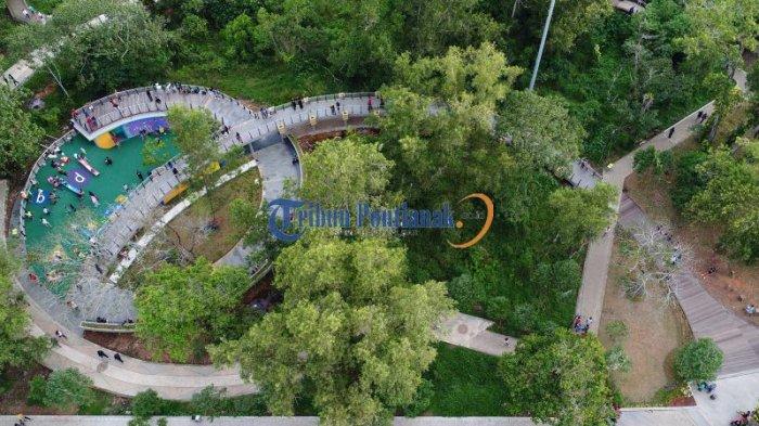 DRONE: Indahnya Bundaran Untan dan Jogging Track Taman Digulis Pontianak - jogging-track-taman-digulis-pontianak_20170203_203351.jpg