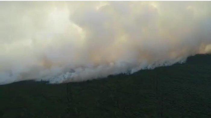 Polres Singkawang Tangani Kasus Kebakaran Hutan dan Lahan, Berikut Ancaman Hukuman Bagi Pelaku