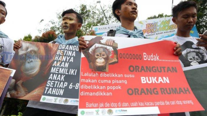 Kampanye Damai Peringati Hari Primata Indonesia di Bundaran Untan, Ini Foto-fotonya! - kampanye-damai_20180130_185131.jpg