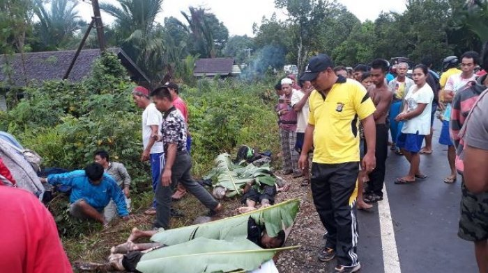 Peziarah dari Pontianak Kecelakaan Maut di Trans Kalimantan! 11 Orang Tewas