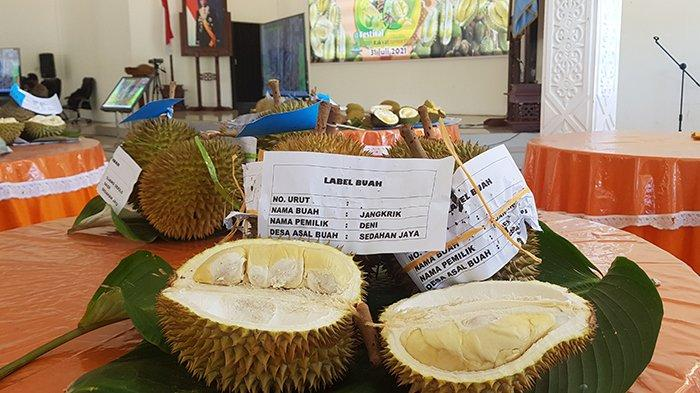 Lelang Durian Virtual di Kabupaten Kayong Utara Diperkirakan Habiskan 6.500 Buah