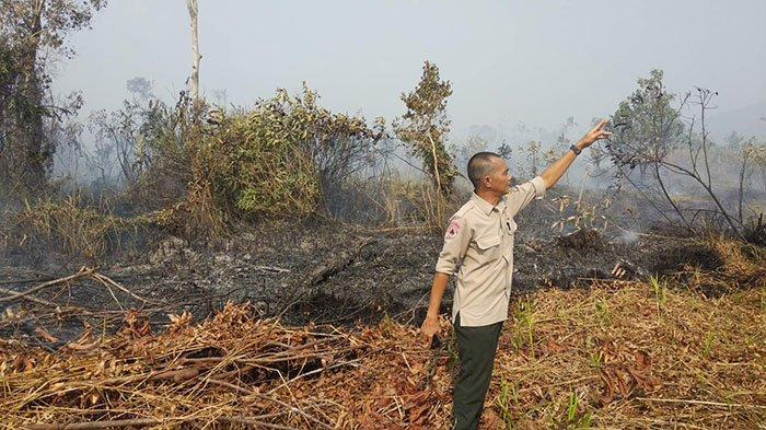 BPBD Klaim Kebakaran di Dekat SMPN 3 dan RSUD Kayong Utara Sudah Padam