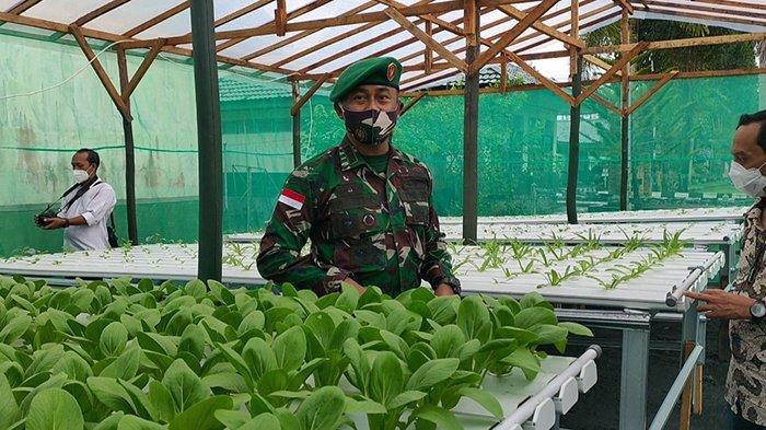 Paldam XII/Tanjungpura Bangun Rumah Hidroponik Jaga Ketahanan Pangan Dimasa Pandemi Covid-19