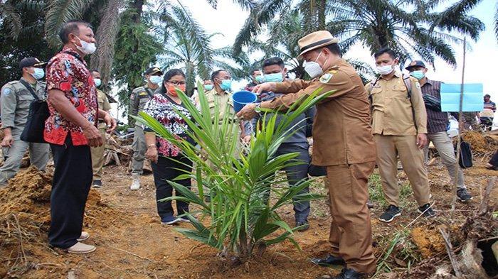 Wabup Sanggau Hadiri Tanam Perdana Tanaman Kelapa Sawit Program PSR di Desa Harapan Makmur