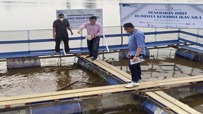 Astra Resmikan KBA Durian Berseri Sungai Raya, Tabur Bibit Budidaya Keramba Iklan Nila - kliliokliokliokl.jpg