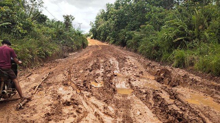 Jalan Antar Kecamatan Bak Kubangan Lumpur, Anggota DPRD Sekadau Minta Pemkab Ambil Tindakan