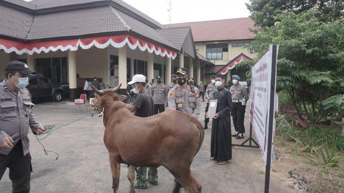 Kapolres Kubu Raya AKBP Yani Permana, S.I.K., M.H serahkan sapi kepada Pengasuh Pondok Pesantren dan Panti asuhan di Halaman Mapolres Kubu Raya, Senin 19 Juli 2021