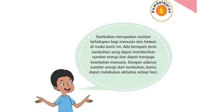 KUNCI JAWABAN Tema 1 Kelas 6 Halaman 55 56 57 58 59 60 61 Subtema 1 Pembelajaran 6 Makhluk Hidup