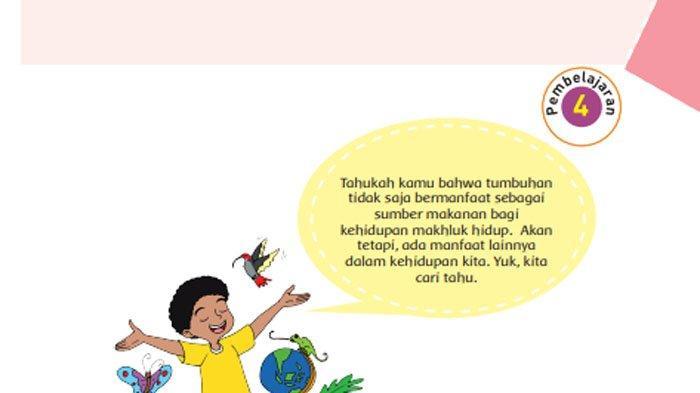 KUNCI JAWABAN Tema 1 Kelas 6 Halaman 39 40 41 42 43 45 46 47 48 Subtema 1 Pembelajaran 4 Tumbuhan