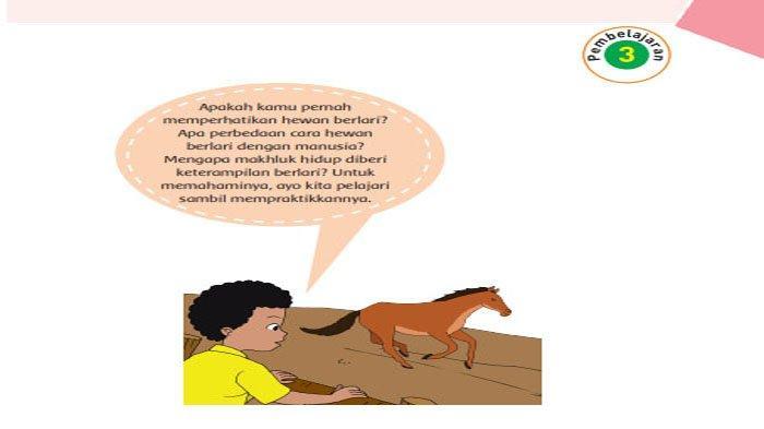 KUNCI JAWABAN Tema 1 Kelas 6 Halaman 133 135 136 137 138 Subtema 3 Ayo Selamatkan Hewan dan Tumbuhan