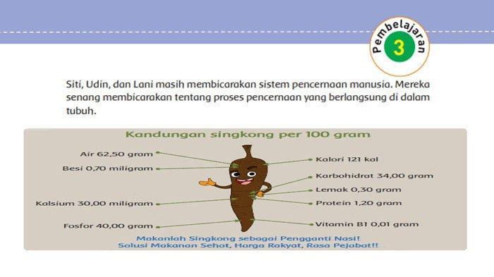 KUNCI JAWABAN Tema 3 Kelas 5 Halaman 21 22 23 24 25 26 Subtema 1 Pembelajaran 3 Makanan Sehat