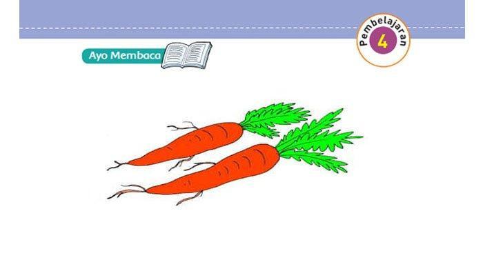 KUNCI JAWABAN Tema 3 Kelas 5 Halaman 27 28 29 30 31 32 33 Subtema 1 Pembelajaran 4 Makanan Sehat