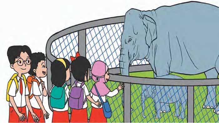 KUNCI Jawaban Tema 7 Kelas 2 Halaman 183 184 185 186-191 Persahabatan Gajah dan Tikus