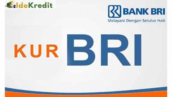 KUR BRI ONLINE Tanpa Agunan Dapatkan Pinjaman KUR BRI 50Jt | Akses Website KUR BRI Kur.bri.co.id