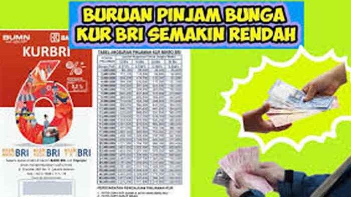 KUR BRI Co Id Daftar Online Login https://kur.bri.co.id Dapat Pinjaman Kredit Usaha Rakyat 100 Juta
