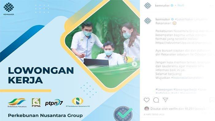 LOWONGAN BUMN Terbaru, PT Perkebunan Nusantara Buka Rekrutmen Nih! Yuk Coba Loker PTPN Berikut