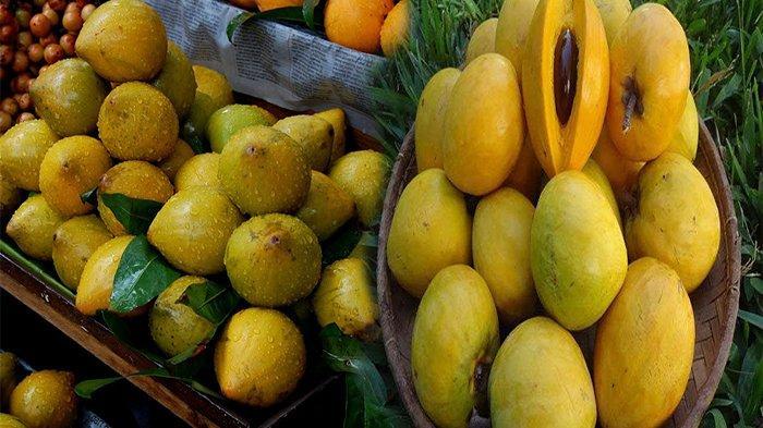 MANFAAT BUAH Campolay atau Buah Alkesa untuk Kesehatan, Kaya Vitamin C Mampu Menatrilisir Virus