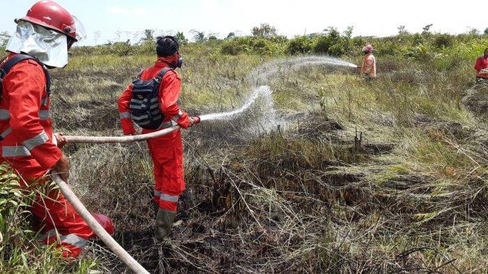 Satu Hektar Lebih Lahan Gambut di Desa Sungai Awan Kanan Ketapang Terbakar