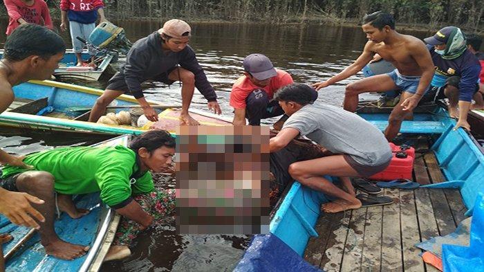 Pasutri Korban Laka Air Ditemukan Wilayah Danau Sentarum Kapuas Hulu Dengan Kondisi Saling Berpeluk