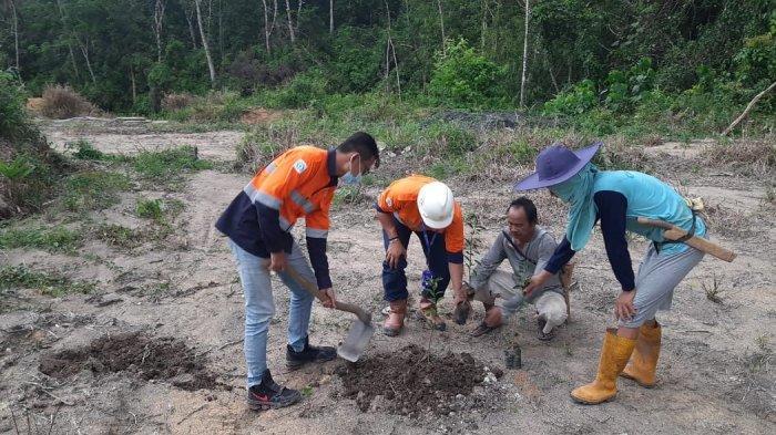 Dukung Pemberdayaan Masyarakat, CITA Dampingi Kelompok Tani Kabun Basar Tanam Jeruk Siam