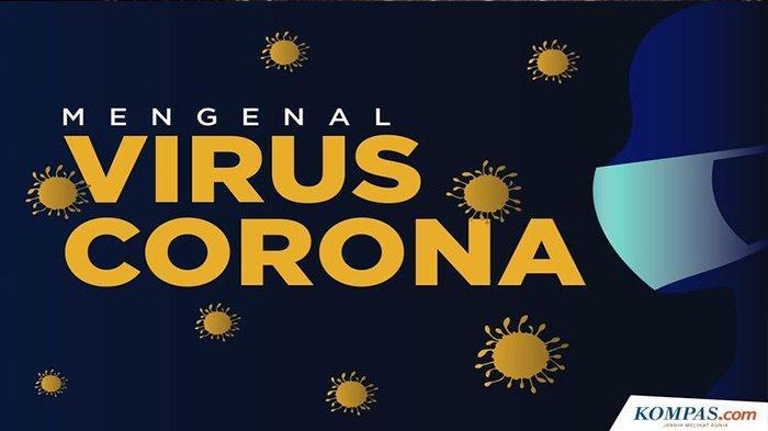 GOLONGAN Darah Tertentu Rentan Terserang Virus Corona Covid-19 ? Cek Hasil Penelitian Terbaru