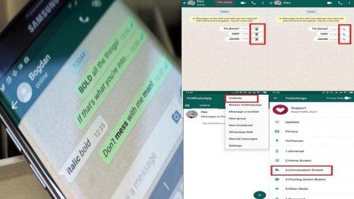 Mengubah Tanda Centang Biru WhatsApp Jadi Emoticon Lucu, Begini Caranya!