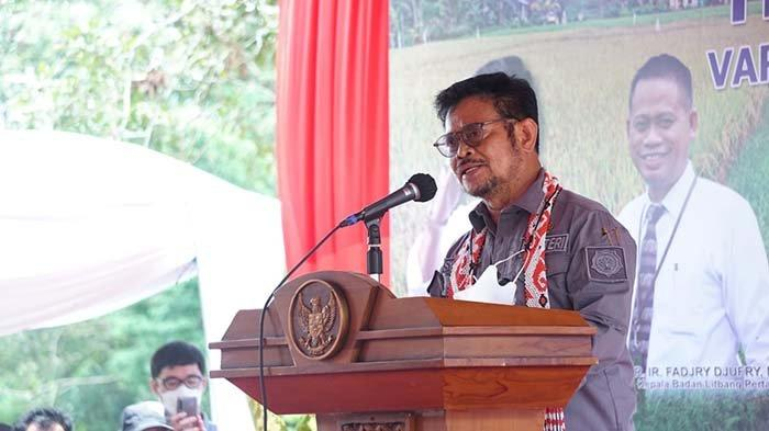 Syahrul Yasin Limpo Percaya Keberadaan Pelabuhan Internasional Kijing di Mempawah Buka Ruang Ekspor