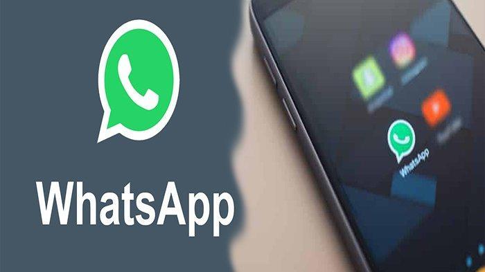 Tinggal Menghitung Hari Puluhan Merek HP Tak Bisa Akses WhatsApp, Cek Cara Mengetahui Versi OS HP