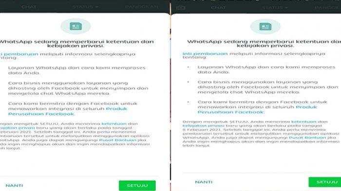 CARA Antisipasi Aturan Baru WhatsApp 2021 dengan Risiko Akun WA Hilang, Apa yang Harus Dilakukan