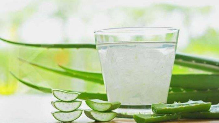 OBAT Herbal Sembelit, Alternatif Obat Sembelit Alami Mujarab | Cara Mengatasi Susah Buang Air Besar