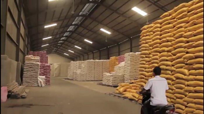 Gunakan Listrik PLN, Pelaku Usaha Agrobisnis Raup Untung Lebih Besar