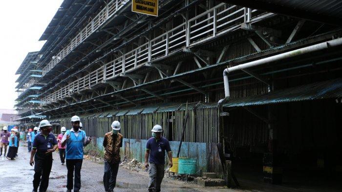 Dua Industri Pilih Jadi Pelanggan Premium PLN, Akui Lebih Hemat Biaya Produksi