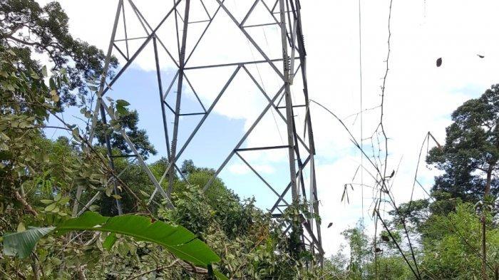 Amankan Pasokan Listrik, PLN UP3B Kalbar Lakukan Inspeksi Rutin Jalur Transmisi