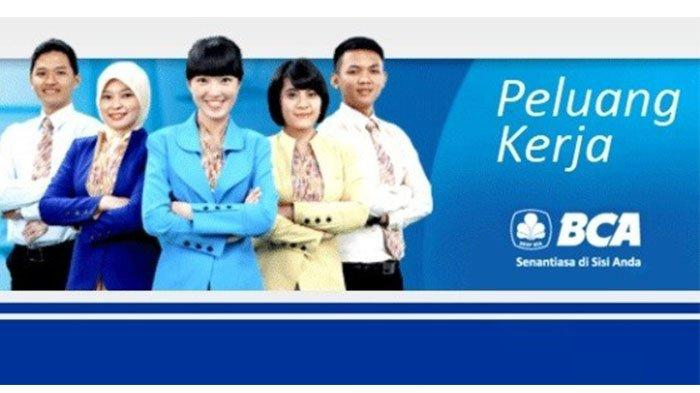 Lowongan Kerja BCA 2020, Akses Karir.bca.co.id Loker Peluang Berkarir  Bersama BCA Buka di 17 Lokasi - Tribun Pontianak