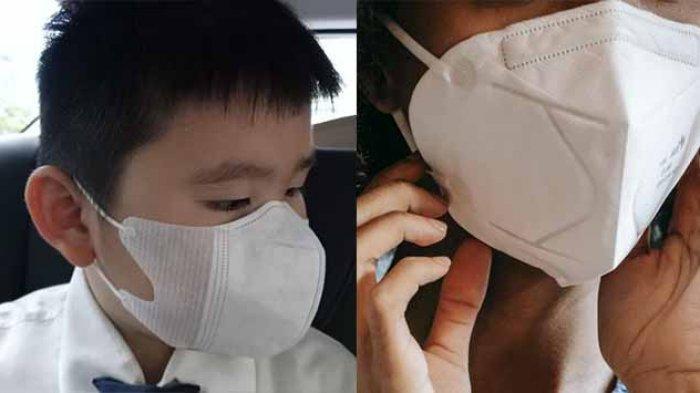 CARA Beli Masker Duckbill Murah Secara Online di Alfamart Masker Duckbill Viral Cegah Virus Corona