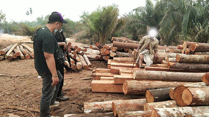 Gerebek Ilegal Logging di Ambawang, Polisi Temukan Sembilan Lokasi
