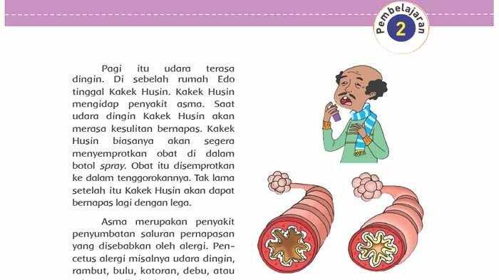 Apa yang Terjadi Pada Organ Pernapasan Penderita Penyakit Asma? Jawaban Buku Tematik Kls 5 Tema 2