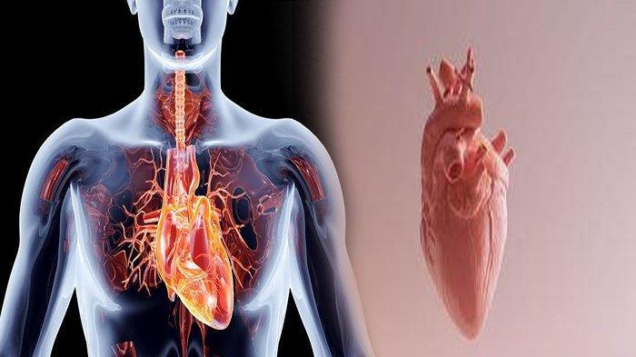 APA Itu Penyakit Jantung Rematik? Ini Gejala Penyakit Jantung Rematik dan Cara Mengobatinya