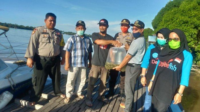 Dukung Program Desa Tangguh, DKP3 Sekadau Salurkan Bibit Ikan kepada Kelompok Perikanan