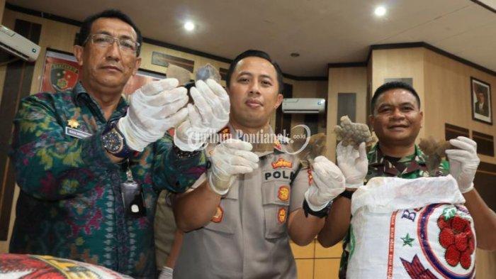 FOTO: Pengungkapan Kasus Perdagangan Gelap Sisik Trenggiling - perdagangan-sisik-trenggiling-4.jpg