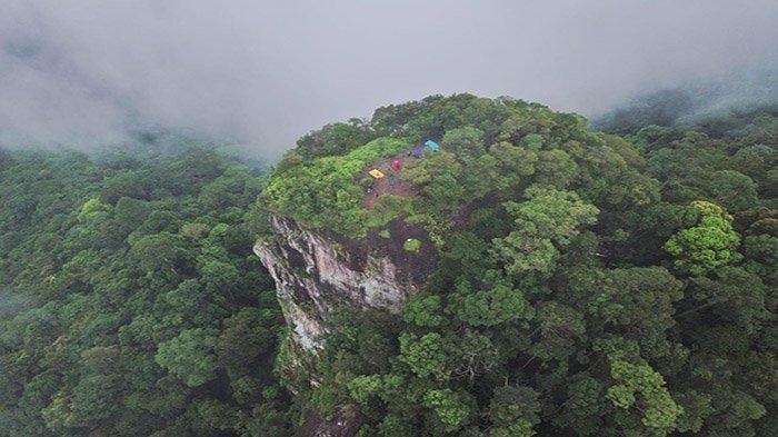 Pesona Bukit Kuri merupakan destinasi wisata olahraga dan petualangan yang berada di Desa Sinar Kuri, Kecamatan Sungai Laur, Kabupaten Ketapang, Kalimantan Barat.