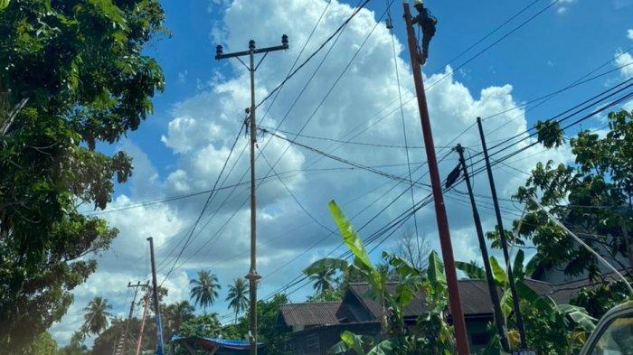 Minimalisir Potensi Gangguan Listrik, PLN UP3 Pontianak Rawat Jaringan Listrik