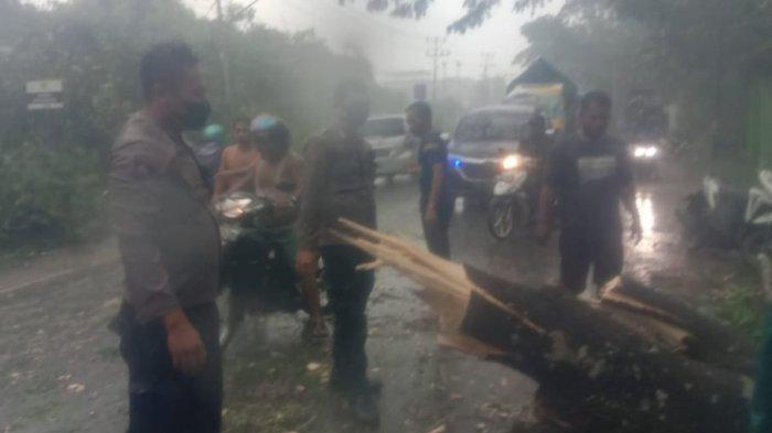 Personel Polsek Sungai Ambawang Bersama Warga Evakuasi Pohon Tumbang di Jalan Trans Kalimantan
